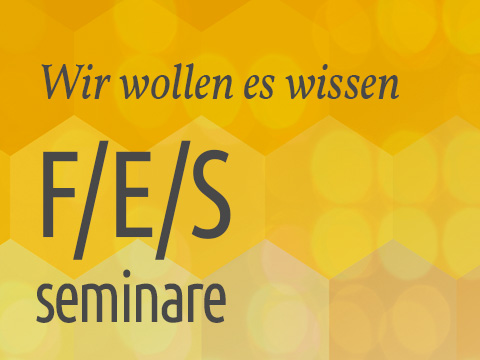 F/E/S Seminare
